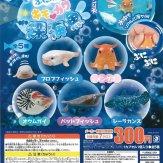 ぷにっとキモカワ深海魚(40個入り)