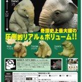 RBEN STUDIO(リーベンスタジオ)アニマルフィギュアマスコット(30個入り)