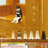 座る犬(50個入り)