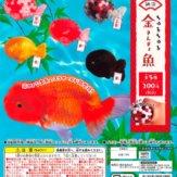 納涼ちゅるちゅる金魚(50個入り)