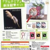 コロコロコレクション ちっちゃなペット「アルテミア」飼育観察キット(50個入り)