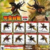 甲虫対戦 -飛翔編-(50個入り)