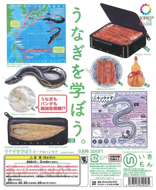 サイエンステクニカラー ウナギを学ぼう ハンカチ&ポーチ(40個入り)