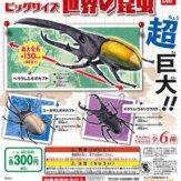 ビッグサイズ昆虫(40個入り)