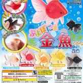 ぷよぽにょ金魚(50個入り)
