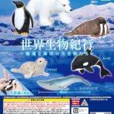 世界生物紀行~極地と海洋の生き物たち~(50個入り)