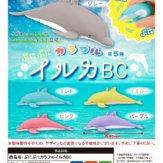 ぷにぷにカラフルイルカBC(40個入り)
