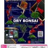 自分で作る盆栽キット DRY BONSAI[ドライ盆栽](50個入り)