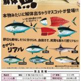 解体!!ざ・魚マスコット(40個入り)