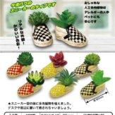 スニーカープランター ~多肉植物Ver.~(50個入り)