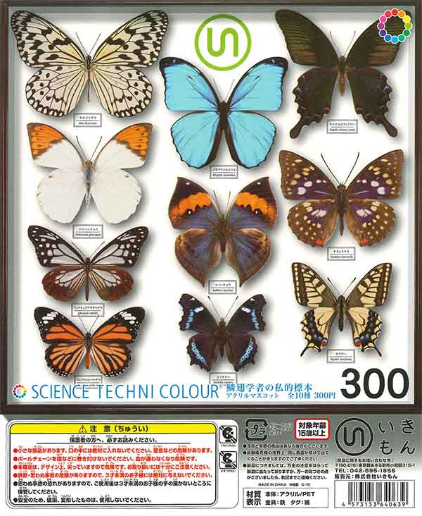 サイエンステクニカラー 鱗翅学者の私的標本アクリルマスコット(40個入り)