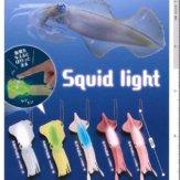 コロコロコレクション Squid light(40個入り)