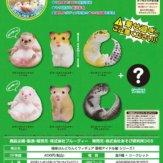 極楽はんどりんぐフィギュア 動物アイドル編 シリーズ1(40個入り)