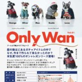 Only Wan Vol.01(30個入り)