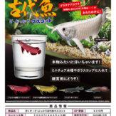浮くぞ!ざ・ぷっかり古代魚マスコット(40個入り)