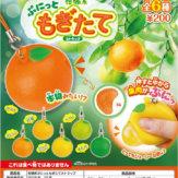 柑橘系ぷにっともぎたてストラップ(50個入り)