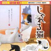 じゃれる猫(50個入り)