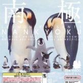 ネイチャーテクニカラー 南極(30個入り)