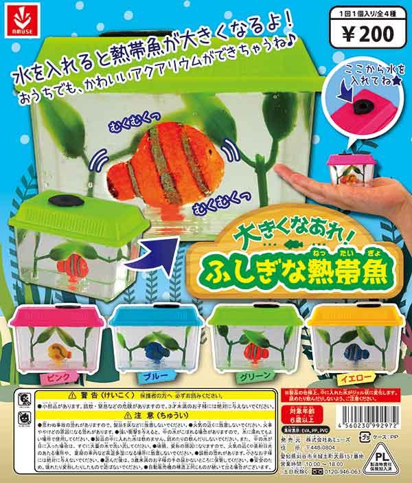 大きくなるよ!ふしぎな熱帯魚(50個入り)