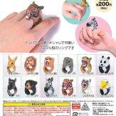 ネイチャーアニマルリングコレクション3(50個入り)