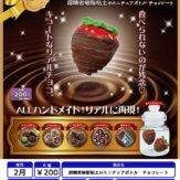 超精密樹脂粘土inミニチュアボトル チョコレート(50個入り)