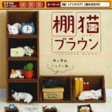 棚猫 ブラウン(50個入り)