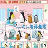 ペンギン身体測定(50個入り)