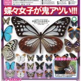 サイエンステクニカラー 鱗翅[りんし]学者の私的標本 アクリルマスコット(50個入り)