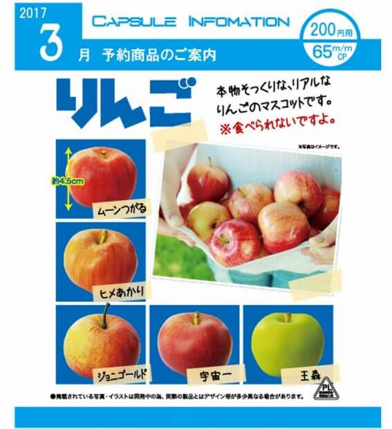 りんご(50個入り)