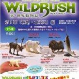 カプセルQミュージアム WILDRUSH 真・世界動物誌第3弾「極地・北極圏」編(30個入り)