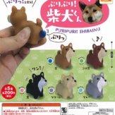 コロコロコレクション ぷりぷり!柴犬くん(50個入り)