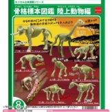 骨格標本図鑑 陸上動物編(100個入り)