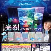 イルミネーションスライミー ~ドルフィンアクアリウム~(50個入り)